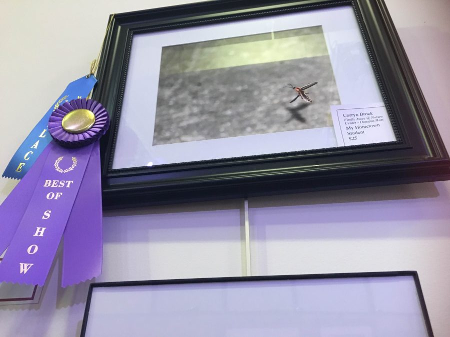 Corryn Brock wins awards for her photo the