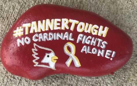 The Rock Doctor created a rock to show his support of Tanner Gillen.